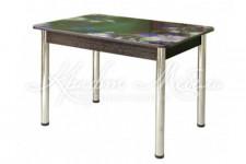 Стол обеденный фотопечать СО-2 (Росток)