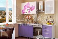 Кухня Орхидея 1.6м (готовое решение)