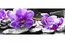Фартук для кухни ABS Цветы 51 Фиолетовые орхидеи
